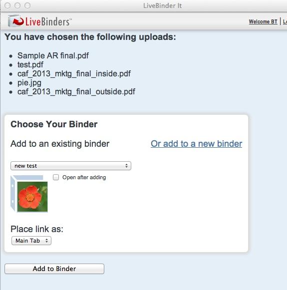 LiveBinder It interface